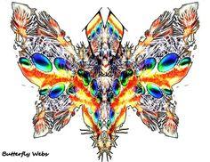 Butterfly webs