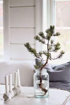 Alternatieve kerstboom: dennen tak in een vaas.