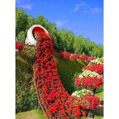 Gorgeous! #containergardens #gardendecor #NYCFlorists #gardenpottery #flowers #gardeninspo