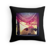 'Looking through the Window Cow' by owlHouseINK Through The Window, Laptop Skin, Cow, Duvet Covers, Greeting Cards, Iphone Cases, Tapestry, Throw Pillows, Hanging Tapestry