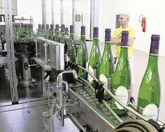 La venta de botellas de vino 'Alicante' supera por primera vez los 10 millones