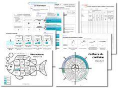 Les activités aquatiques à l'école: dossier très intéressant avec 4 niveaux vraiment pertinents