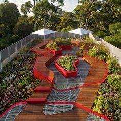 Burnley Living Roofs by HASSELL on Landezine © Peter Bennetts- i have the plan for this on another board.