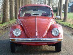 Volkswagon Van, Vw Beetles, Vintage Cars, Vw Bugs, Simile, Pantone, Motorbikes, Vehicles, Model