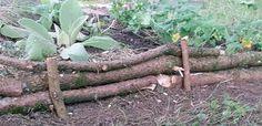 Eine Beeteinfassung kannst Du ganz einfach selber bauen - ich habe dafür abgesägte Äste von einer Tanne genutzt. Ein kleines Garten-Projekt für zwischendurch.