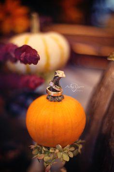 October Weddings <3