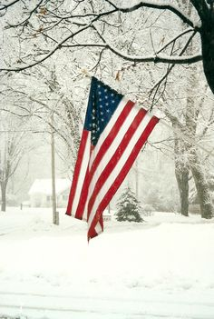Snow with American Flag