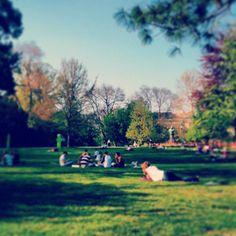Stadtpark #vienna #weather #instadaily #instaweather #park #wien #österreich #austria