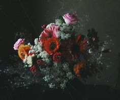 馥郁 redolent of flowers on Behance