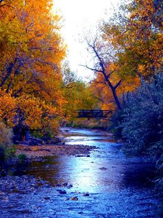 Fall Waters