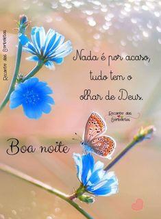 Boa Noite - ImagensBomDia.net Good Night Quotes, Day For Night, Dandelion, Portuguese, Motivational Quotes, Angel, Good Night Greetings, Good Night Sweet Dreams, Good Night Family