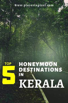 Read more about the best places and things to do among many places in Kerala for a honeymoon. Here are the Best Kerala Activities and Destinations for Honeymoon Couples. Honeymoon in Kerala || Kerala Honeymoon Destinations || Indian Honeymoon #Kerala #Honeymoon #tour #Couples #munnar #Alleppey #keralaroutes Kerala Travel, India Travel Guide, Kerala Backwaters, Family Vacation Spots, Honeymoon Places, Munnar, Best Places To Travel, Honeymoon Destinations, Travel Quotes
