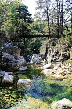 I Like It Nice And Attractive...Always At National Park Peneda do Gerês,In My Country Portugal !... http://samissomarspace.wordpress.com