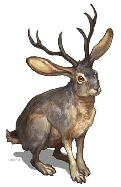 Jackalope - G.River.  Beware the jackalope.  Half antelope half rabbit...born by accident when an antelope slid under a fence and accidentally impregnated a rabbit crouched nearby.   Whoooaaa.