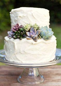 Succulent Wedding Cake (I have more on the Wedding - desert board)