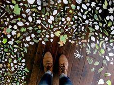 leaves on wooden floor