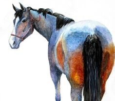 Horse of Many Colors Original Watercolor Painting by StudioFox, $50.00