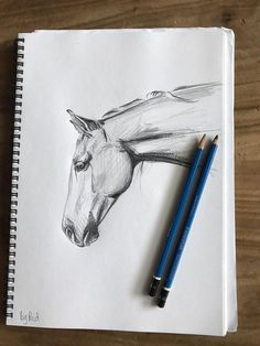 Original horse drawing, hand drawn black and white artwork. Gift, present, wall art or modern home decor Original hand drawn horse. Horse Drawings, Art Drawings Sketches, Animal Drawings, Pencil Drawings, Hand Pencil Drawing, Pencil Sketching, Realistic Drawings, Sketch Art, Art Illustrations