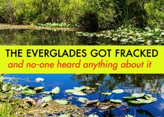 Everglades Got Fracked!! :(