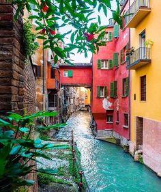 Bologna                                                                                                                                                                                 More