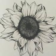 """Résultat de recherche d'images pour """"dessin tournesol tatouage"""""""