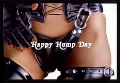 Hump Day Photo by kayla_xander Hump Day Humor, Wednesday Humor, Happy Humpday Quotes, Good Night Love Messages, Questions To Ask Your Boyfriend, Harley Davidson Fatboy, What Day Is It, Lady Biker, Girl Quotes