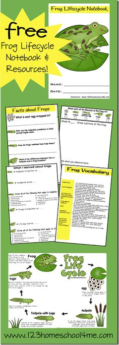 Frog Lifecycle Notebook & Resources (free; from 123homeschool4me)