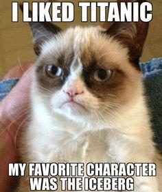 Grumpy cat funny humor Titanic