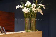 Phalaenopsis, Glass Vase, Flowers, Plants, Decorations, Business, Home Decor, Florals, Decoration Home