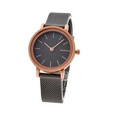 SKAGEN (スカーゲン) SKW2492 レディース 腕時計 - 拡大画像