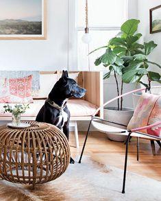 interior designer claire zinnecker's austin, texas home. / sfgirlbybay