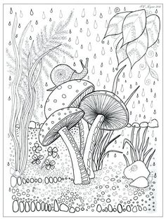 Mushroom Coloring Pages Best 6 Images On Colouring For Adults