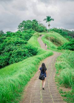 Why The Beautiful Campuhan Ridge Walk in Ubud Bali Is Worth A Visit | If you are looking for Bali travel tips and beautiful places to visit, especially in Ubud, click to read more! This guide is something you should consider in your itinerary for Bali. #bali #ubud #balitrip #ubudbali #balitravel
