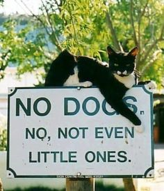 LEONARD CONSIDERS IT HIS CIVIC DUTY TO POINT OUT THE SIGN TO NEWCOMERS!