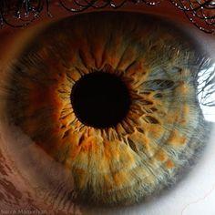 Extreme close-up of human eye macro -Suren Manvelyan