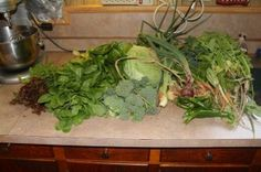 Should I can or freeze my garden harvest? Which method is best for you, and your harvest?