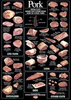 Chart of Pork Cuts -- very informative