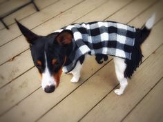 Upcycled Dog Poncho Dachshund Reversible Black by DesignsbyPolina