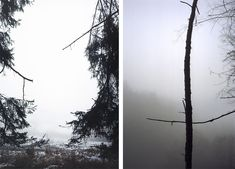 "<p>Jitka+Hanzlová+explores+in+her+various+series+of+photographs+the+individual,+his+surroundings,+and+the+landscape+in+which+he+lives.+In+so+doing,+she+often+approaches+the+sites+of+her+childhood,+an+aspect+that+she+describes+in+the+following+terms.+""The+path+that+I+take+is+a+path+back+to+…</p>"