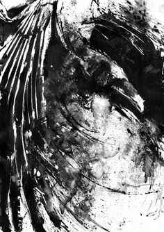 Black And White Raven Kunstdruck Bird Poster von BlackraptorArt
