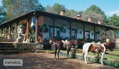 Spanish hacienda... This pix makes me giddy!!!  ....the materials, the porches, the horses tied out front....   And look at all the chimneys!