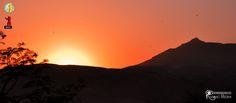 Sunset with birds on the Theban mountain #egypt #Luxor #koreinegypt