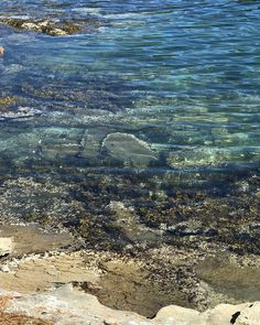 Seascape. @hellobc @southerngulfislands @galianoisland #salishsea #lookslikeapainting #nofilter #ocean #watercolor #westcoast #shoreline #sea #marinelife #westcoastlife #islands