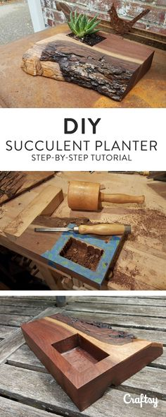 See how a leftover piece of black walnut wood is transformed into a unique DIY succulent planter — then try it yourself with some wood you have lying around!
