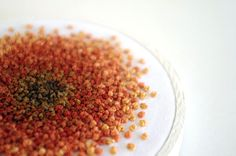 Embroidery Hoop French Knot Ombre Color Progression in Orange by Sometimes I Swirl.