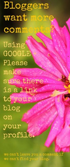 If you are a blogger who uses GOOGLE + for your profile, please make sure there is a link to your blog.  We would love to leave you a comment, but we can't find your blog to do that.  IF YOU AGREE, PLEASE PIN THIS!  Jen @ Muddy Boot Dreams