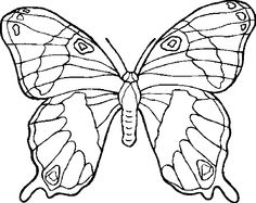 butterfly coloring page 29 is a coloring page from butterfly coloring booklet your children express their imagination when they color the butterfly - Butterfly Coloring Pages Print