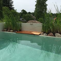 In addition, industrially manufactured sewage treatment plants for domestic wastewater - Trend Garden Decoration Garden Swimming Pool, Swimming Pools, Sewage Treatment, Outdoor Pool, Outdoor Decor, Industrial, Most Beautiful Gardens, Pool Water, Architecture