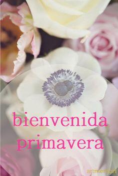 Bienvenida Primavera Wedding Rings, Seasons, Engagement Rings, Logos, Spring, Drawings, Cool Quotes, Good Afternoon, Good Morning
