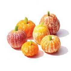 "Little Citrus ""Pumpkins"""